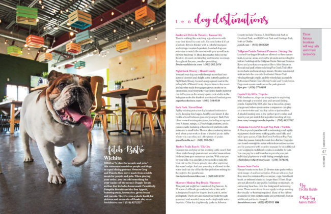 Red the Bulldog at Fetch Bistro for Kansas! Magazine