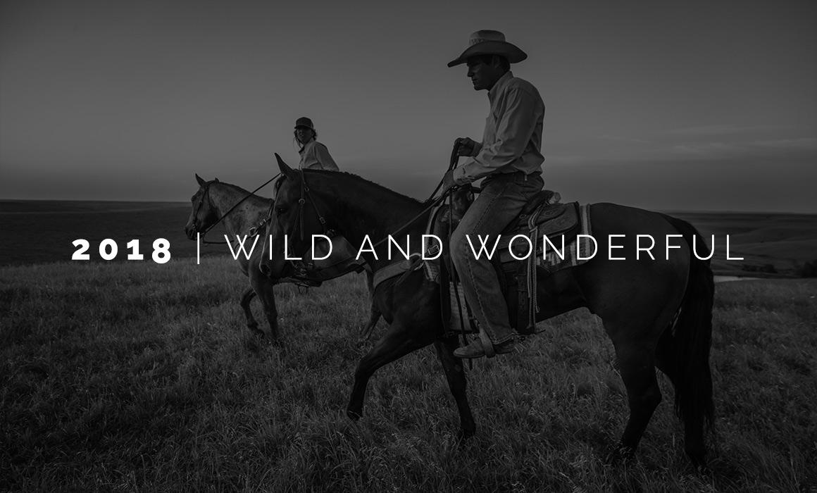 2018: Wild and Wonderful | Aaron Patton, Wichita Photographer