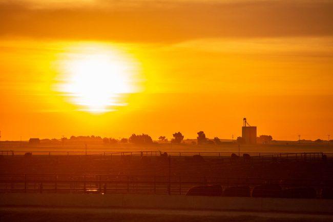 Sunrise over the Gardiner Angus Ranch in Ashland, Kansas